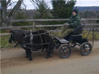 Parvogn for shetland
